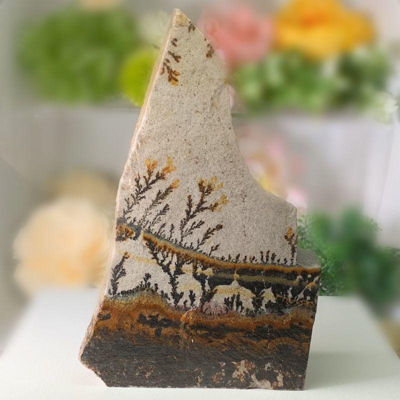 画像1: 自然絵画!木の葉形状鉱物・デンドライト(デンドリティッククォーツ)   天然石 (1)